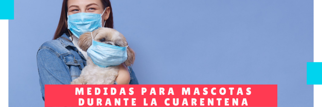 Medidas para mascotas durante la cuarentena - Guarderia CAnina panama