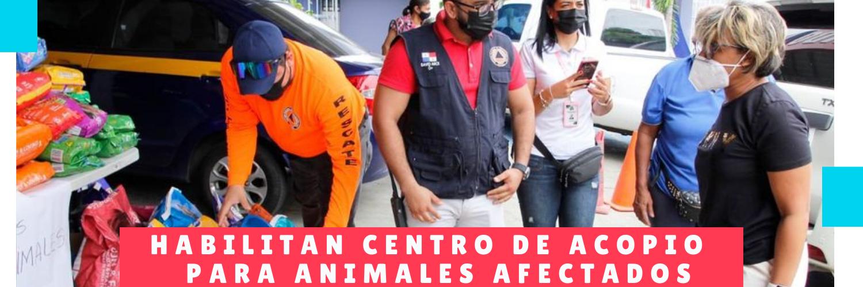 Habilitan centro de acopio para animales afectados - Guarderia perros - Hotel mama canino panama